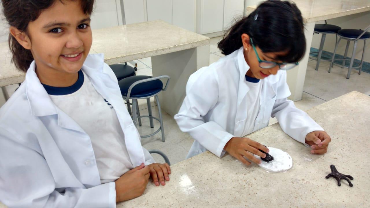 1eb9d5edf2d Clube da Ciência – 4º ano A – Experimento sobre checagem e identificação de  pegadas de animais utilizando impressão em gesso – 2ª parte